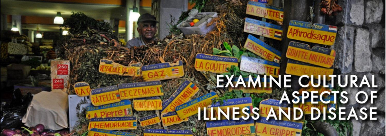 cultural aspect of illness