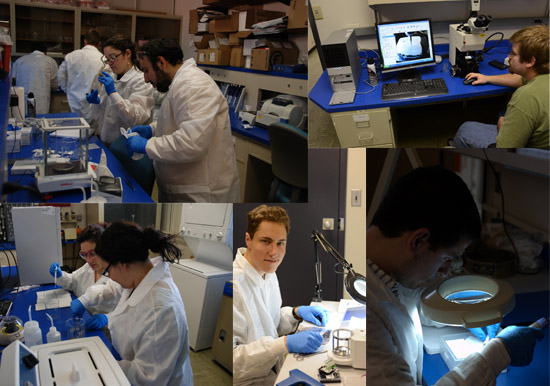Lab students